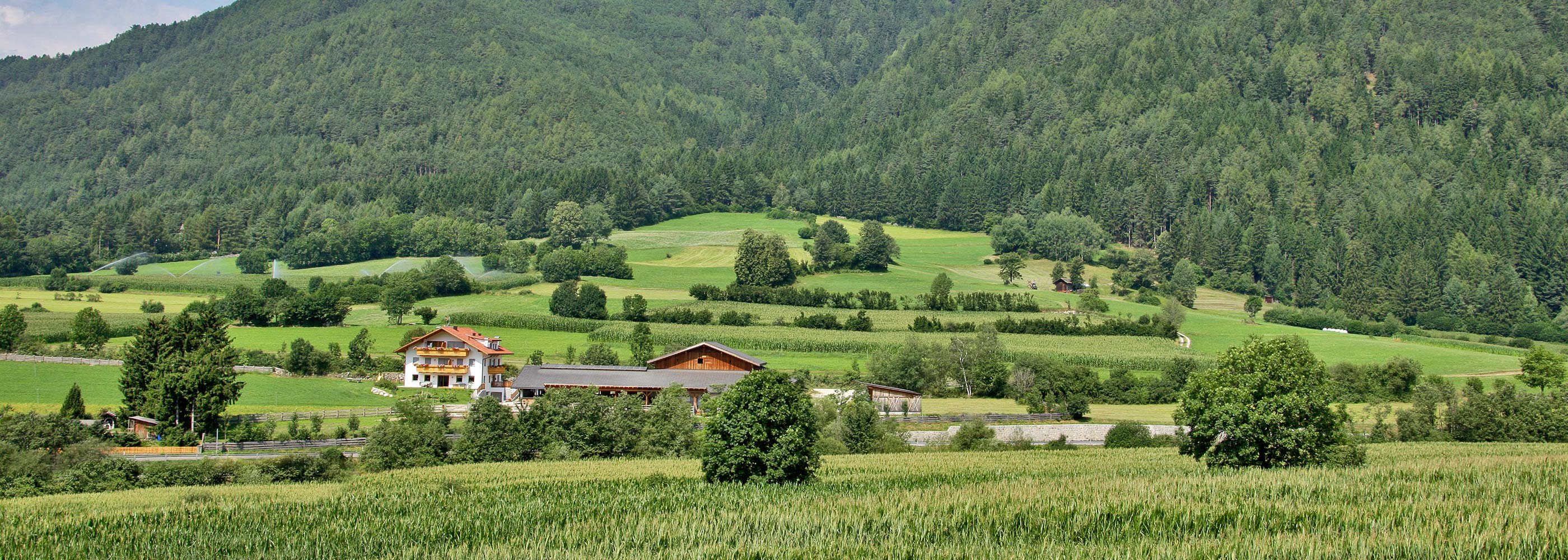 pano-impressions-farm-vacation-south-tyrol